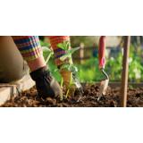 Le bien-être au jardin