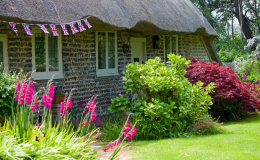plantation-jardin