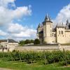 Visites des vignobles de la Vallée de la Loire