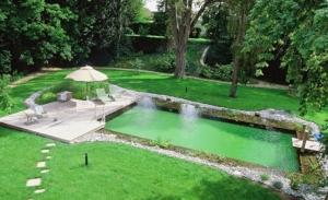 Aménager une piscine naturelle