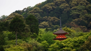 Voyage sur mesure au Japon
